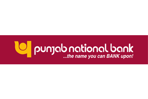 Image result for pnb logo transparent